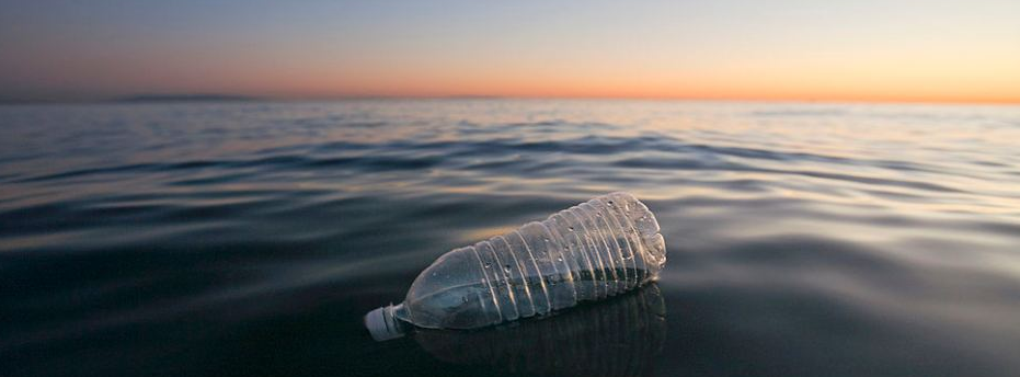 The effects of Sky Ocean Rescue on bottled drinks companies