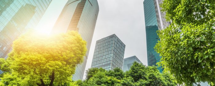 How ESG risks can affect your business